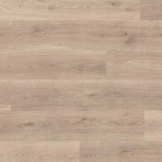Ламинат Balterio Дуб премиум (Premium oak) коллекция Livanti LVI61094