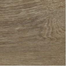 ПВХ-плитка Forbo Honey Fine Oak коллекция Effekta Standart Wood Dry Back 3046 P