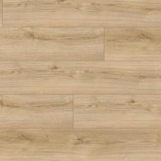 Ламинат Kaindl Дуб Классик (Oak Evoke Classic) коллекция Natural Touch Standart Plank K4420 8 мм