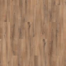 Ламинат Tarkett Дуб темно-коричневый коллекция Первая Сибирская 504466004